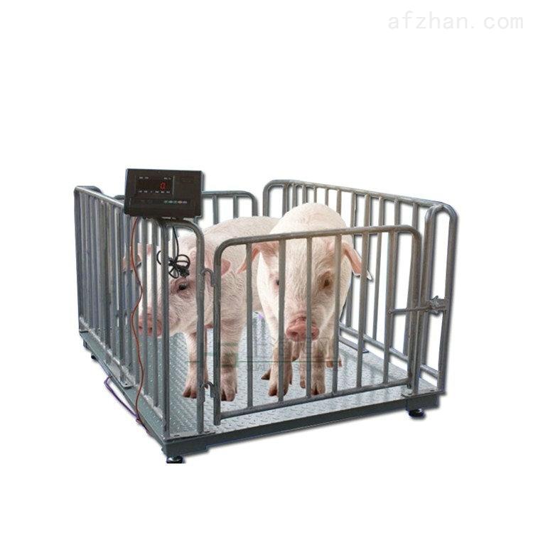畜牧养殖动物秤 1.5*3米称动物地磅秤