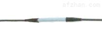 光纖光柵式溫度計