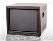 TM-A170G 监视器