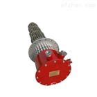 BGY2-220V/3KW防爆式电加热器