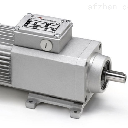 意大利Mini motor同轴齿轮电动机