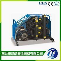 COLTRI MCH13/ET STANDARD 呼吸空气压缩机