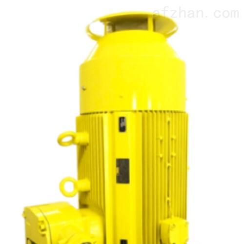 德国MENZEL定制和特殊电机IP67
