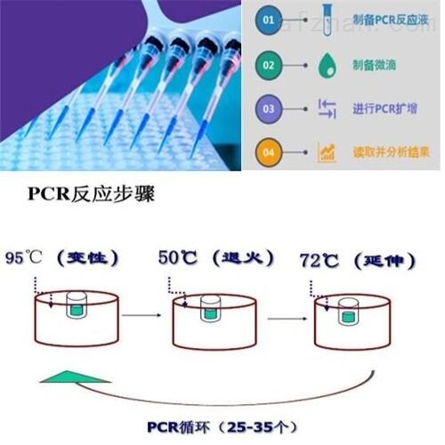 鹦鹉热衣原体探针法荧光定量PCR试剂盒厂家